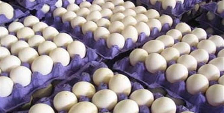 گرانی گریبان غذای کمدرآمدها را هم گرفت/ ریشه افزایش قیمت تخم مرغ چیست؟