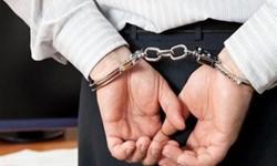 عامل ضرب و جرح دختر ۳ ساله دستگیر شد