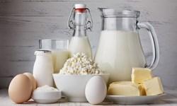 صادرات بیش از یکهزار تن شیر و فرآوردههای لبنی از استان آذربایجانشرقی