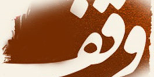 وقف ۸۰۰ هزار دلاری روشندل شیرازی