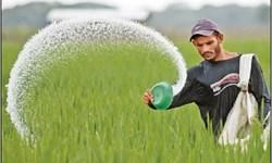خبر خوب برای کشاورزان/ ایران در تولید کود شیمیایی فسفات خودکفا میشود