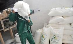 افزایش 364 درصدی قیمت شیرخام طی 5 سال/ قیمت آرد و سبوس سیاسی شده است
