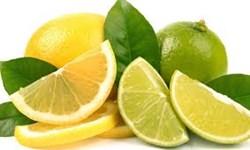 قیمت خرده فروشی لیمو ترش 18 هزار تومان/2 هزار 318 واحد صنفی متخلف پلمب  شدند