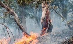 آتش سوزی جنگلهای بخش الوار اندیمشک مهار شد