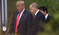 شک دارم اردوغان عامل خروج آمریکا از سوریه باشد
