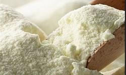 بازار شیر تو شیر دامداران / صادرات شیر خشک کلید بقای صنعت دامداری در روزگار کرونایی