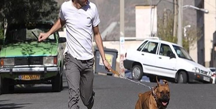 سگگردانی در بوستانها ممنوع میشود؟