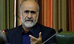 عضو حزب اعتماد ملی: اصلاحطلبان باید به ارزشهای انقلاب  بازگردند