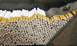 جزئیات عملکرد دخانی دولت در 11 ماه 98/کاهش 27 درصدی صادرات سیگار