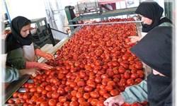 حمایت از راهاندازی مجدد واحدهای تولیدی راکد پارس آباد