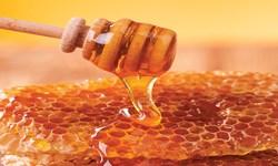پرداخت تسهیلات 3 میلیارد و 630 میلیون ریال به بخش زنبورداری در رامیان