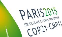 چرا «کُپ۲۴»  برای مسئولان سازمان محیط زیست مهم است؟
