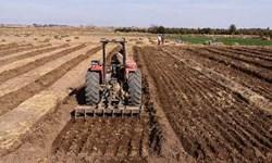 آغاز کشت پاییزه گندم در آذربایجانشرقی