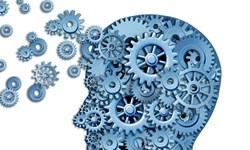 برگزاری دورههای آموزشی آنلاین تخصصی ویژه روانشناسان و مشاوران کشور