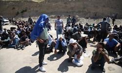 17 معتاد متجاهر و پر خطر در دشتی جمع آوری شد