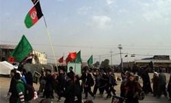 هنوز ثبتنام مهاجرین افغانستانی برای مراسم اربعین آغاز نشده است