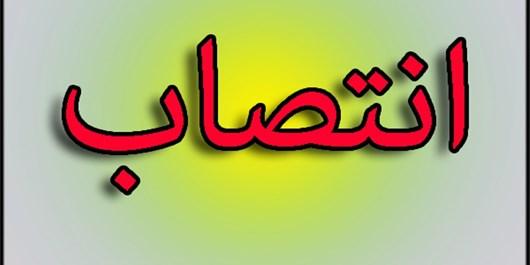 یوسفی مدیر جدید حوزه علمیه خواهران استان بوشهر شد