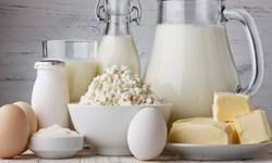 سرنوشت مرغ و تخممرغ در انتظار شیر و لبنیات/ دولت چگونه صنعت تولید پروتئین را زمین زد؟