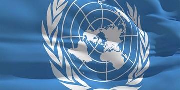 بانی قطعنامه حقوق بشری علیه ایران عامل اصلی قتل کودکان پروانهای است