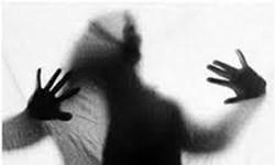 مراجعه ۱۵۰۰ «زنِ در معرض خشونت» به خانههای امن/احداث ۲۴ مرکز برای دختران فراری