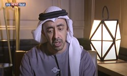امارات: کشورهای عربی مخالف اقدامات ترکیه هستند