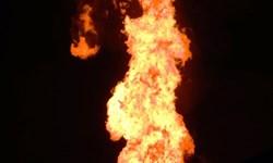 آتشافروز تهرانی سابقهدار بود/ ضرب و جرح و آزار و اذیت جنسی در پرونده او
