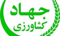 رئیس  مرکز روابط عمومی  وزارت جهاد کشاورزی منصوب شد