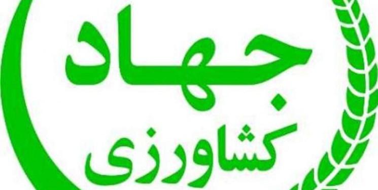 حساسیت انتخاب وزیر جهادکشاورزی دولت سیزدهم برای امنیت غذایی کشور