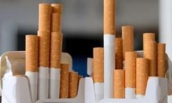 مدیرعامل دخانیات: تحقیق و تفحص مجلس باید کل صنعت دخانیات را در بر بگیرد