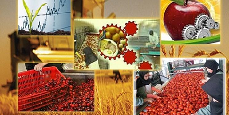 پرداخت 224میلیارد تومان تسهیلات به  طرحهای اشتغال روستایی در لرستان