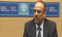 وزیر کشور دولت مستعفی یمن: عربستان در اتفاقات جنوب یمن همدست امارات است