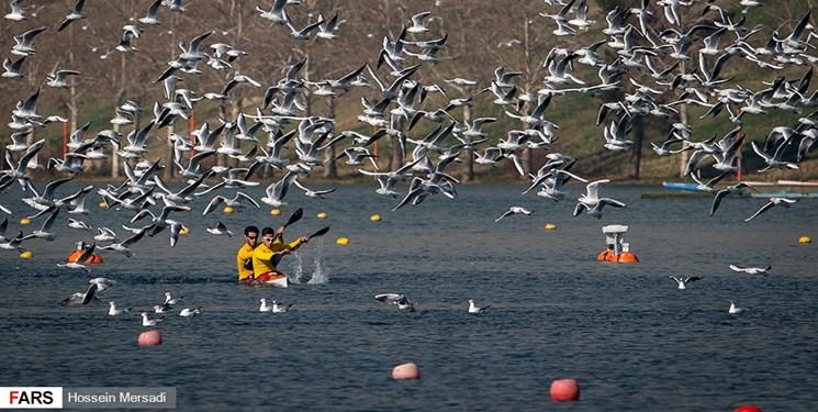 فدراسیون جهانی قایقرانی به دنبال برگزاری رویدادها در سال 2020