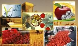 ضایعات 30درصدی  محصولات کشاورزی خام / احداث 5 شهرک تخصصی صنایع غذایی با 12 هزار شغل
