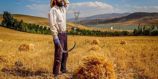 پرداخت 17 میلیارد تومان تسهیلات اشتغالزایی روستایی و عشایری در سمیرم
