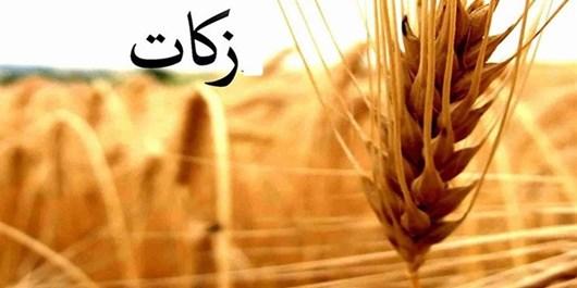 حجتالاسلام برقراری: با پرداخت زکات برکت سرازیر میشود/ کرمیمقدم: جمعآوری بیش از یکمیلیارد تومان زکات در ملایر