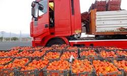 سود گرانفروشی گوجهفرنگی در جیب دلال است نه راننده