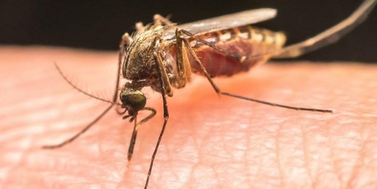 درخواست ایران برای اخذ گواهینامه حذف مالاریا از سازمان بهداشت جهانی