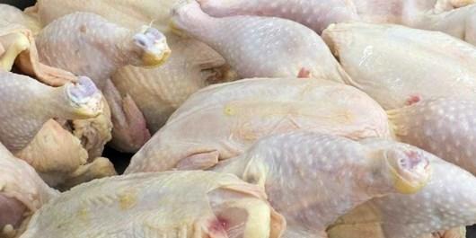 دستگیری سارق 5 تن گوشت مرغ در قوچان