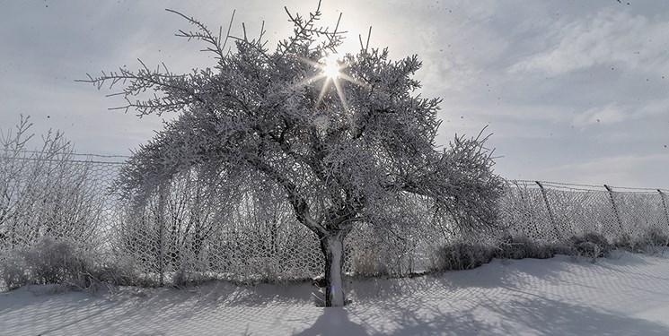سرما در بسیاری از شهرها و باران در پایتخت از فردا/بارش برف و تگرگ و محدودیت جادههای کوهستانی