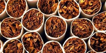 کشف تنباکوهای تاریخ گذشته با بستهبندی جدید در سرخه