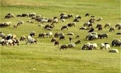 2.7 میلیون هکتار مرتع در آذربایجانشرقی وجود دارد/ هشدار درباره فرسایش خاک در حوضه دریاچه ارومیه