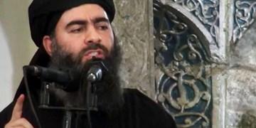 ادعای دیدهبان حقوق بشر سوریه: بقایای جسد البغدادی به پایگاه عینالاسد عراق منتقل شد