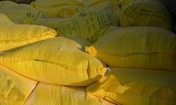 ارسال بیش از 1000 کیسه آرد به مناطق سیلزده و صعبالعبور