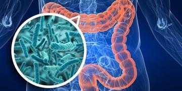 در بدن چه میزان «میکرب» وجود دارد؟