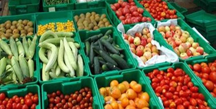 صادرات محصولات کشاورزی روسیه به کشورهای آفریقایی 2 برابر میشود