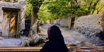 سفرای خارجی در راه نخستین نمایشگاه بینالمللی فرش دستباف تبریز