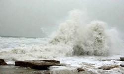 «امواج گرمای دریایی» زندگی را نابود میکند