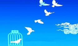 3 آزادی غیرعمد توسط  هیأت روضه الحسین(ع) شهرستان بناب