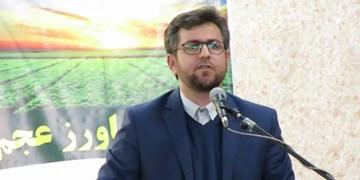 صدور موافقت اصولی گاوداری شیری ۳هزار راسی در شهرستان مشگین شهر