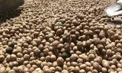کشف  ۴ تن خشکبار قاچاق در چاراویماق